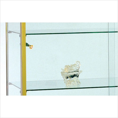 Display Cabinets | Lighted - Wall Mounted Curio Cabinet