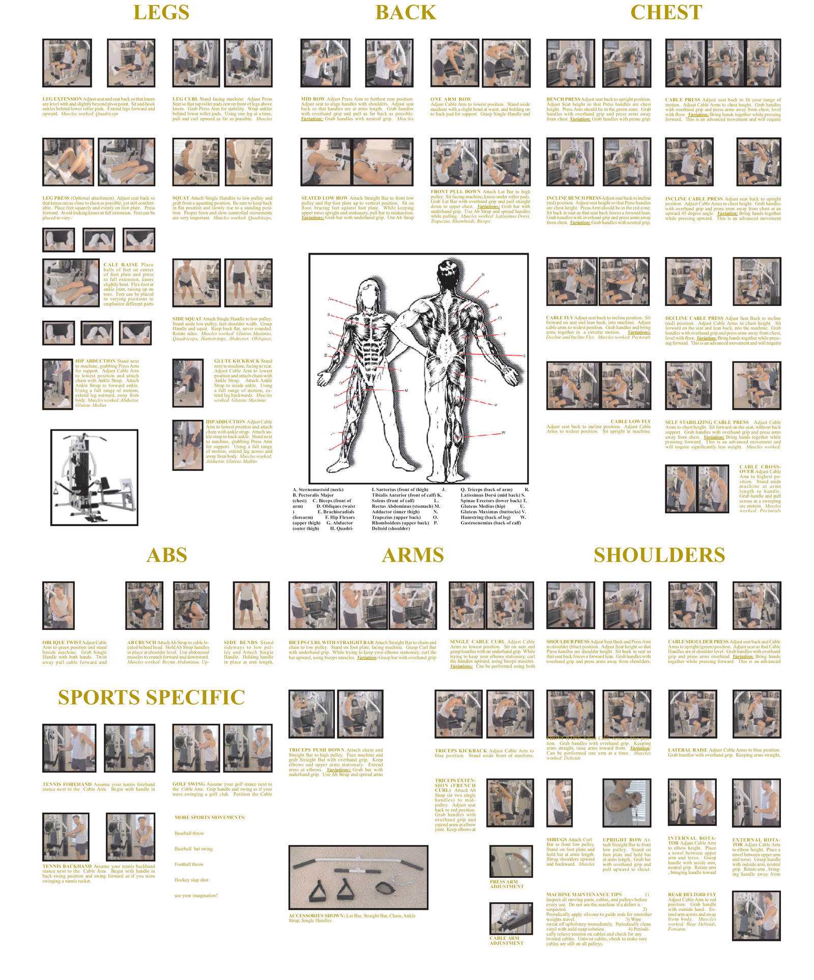 Home Gym Workout Plans 1000 House Plans Workout Plan Gym Workout Plan Workout Routine