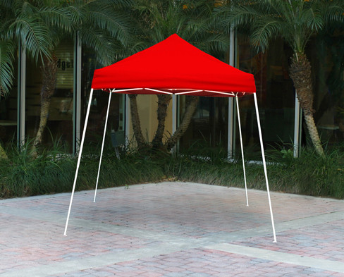 Canopy: 8 X 8 Canopy